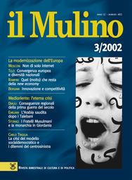 Copertina del fascicolo dell'articolo Euro e Convenzione: due entità per una identità